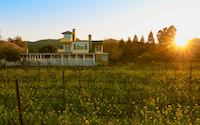 Benessere Vineyards thumbnail
