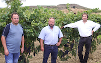 One of Spain's most reputable small family wineries