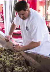 Picture of Michael Pozzan - Owner & Winemaker