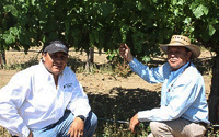 Crafting beautiful wines from Guillermo's vines.