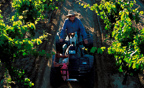 Carrying on the tradition of producing the best possible Zinfandel wines