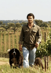 Picture of Alexandre Relvas, Jr. - Winemaker